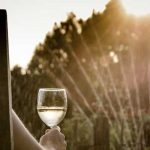 best-wine-apps-for-south-african-wines