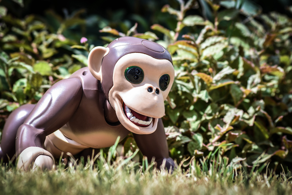 zoomer chimp robot monkey