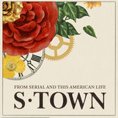 s town crime podcasts