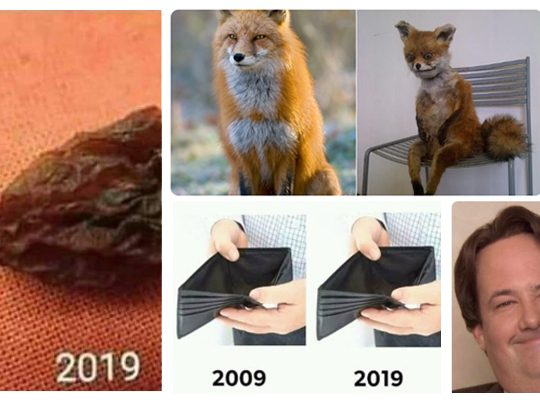 the-10-year-challenge-bytesized-2019