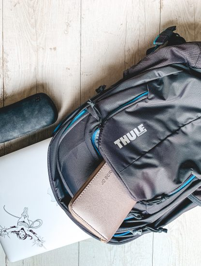 Thule chronical backpack